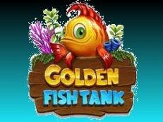 golden fish tank - Golden Fishtank