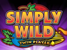 simply wild twinplayer - Gokkasten iPad - Play free Casino games on the iPad