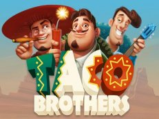 taco brothers - Taco Brothers