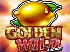 golden wild arcade